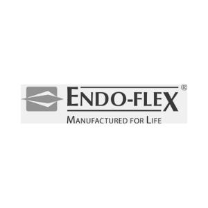endoflexlogo